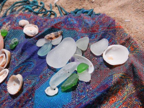 some of Lauren's treasures from the ocean