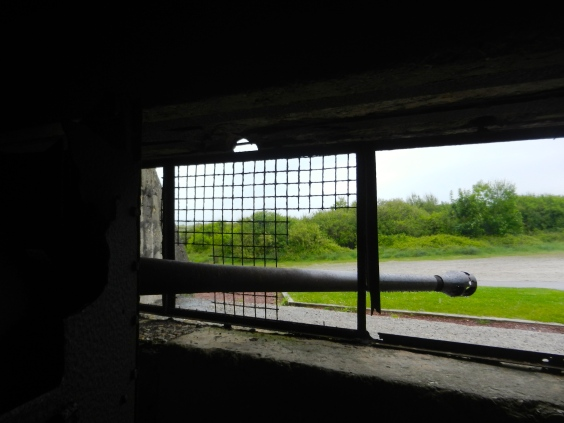 view from inside the bunker