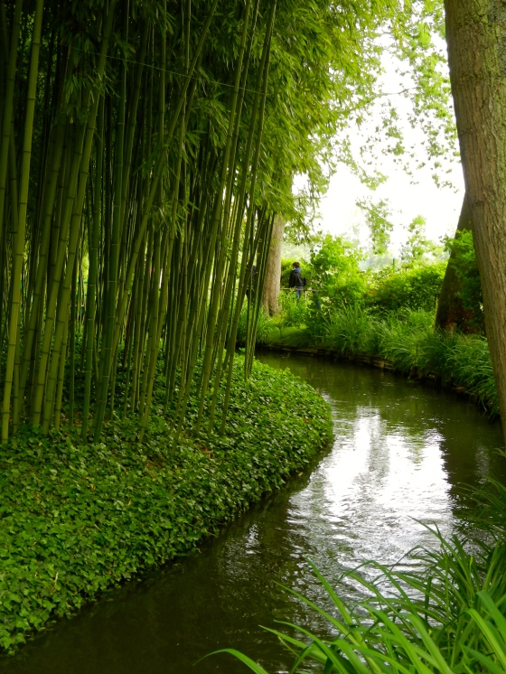 Bamboo forest in Monet's garden