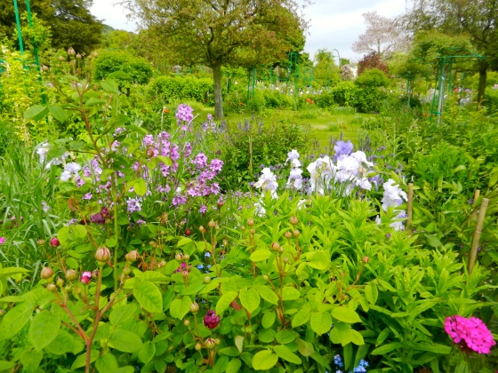 The view of the rambling garden in Giverny