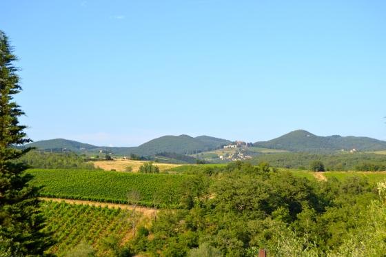 Distant Tuscan village