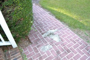 "Front walkway would have been a plus if you had repaired the broken pieces of ""brick"""