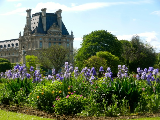 Irises line the walkways of the Tuileries Garden in front of the Louvre