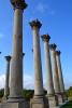 Capitol columns, National Arboretum