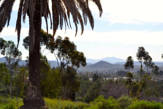 hills-of-Escondido
