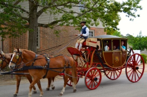 Delightful tour of Williamsburg in a horse-drawn carriage