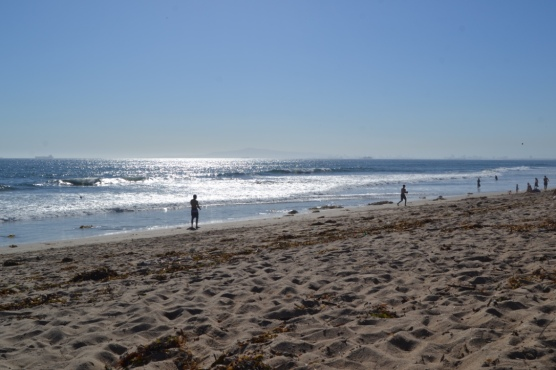 Bolsa Chica all to ourselves